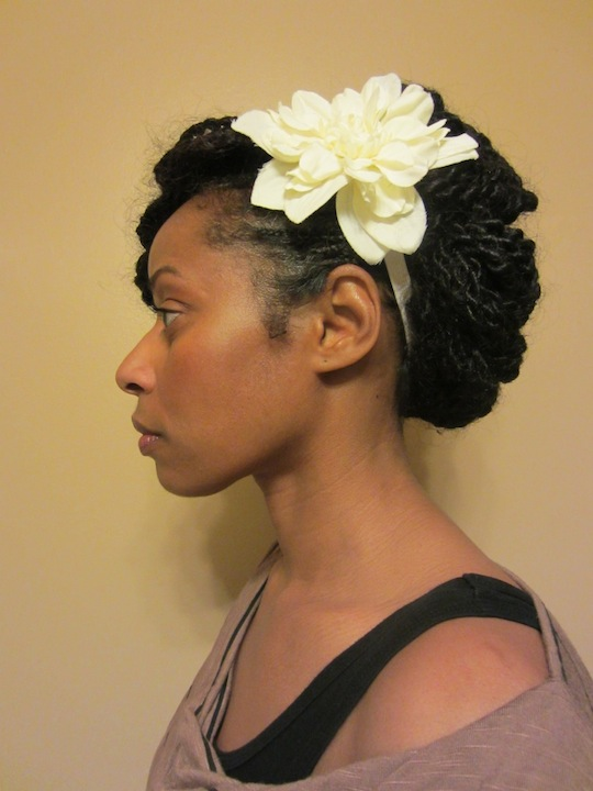 Afro Puffy Twists: A Protective Style in Review | hairscapades