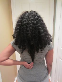 1/9/13 length check (back1)